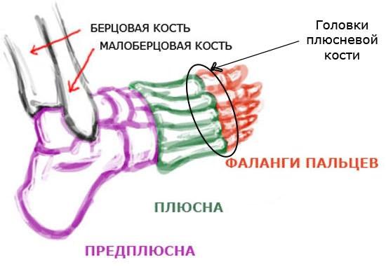 Sellest, mis ilmub liigeste artriidi Kleebi liigeste valu