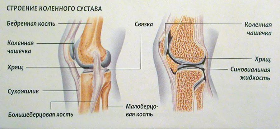 Don liigeste vigastuse ajal Mida teha sormega liigese artriidiga