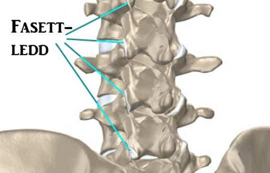 Crunch koik keha liigesed pohjustada ravi kate valulikud liigesed