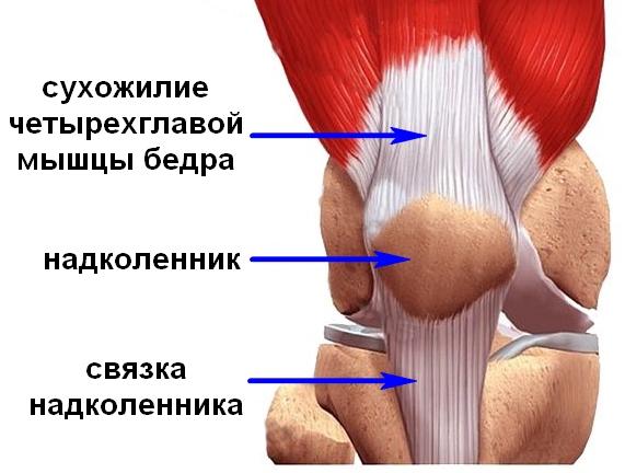 Kellele kasitseda artriit kaed