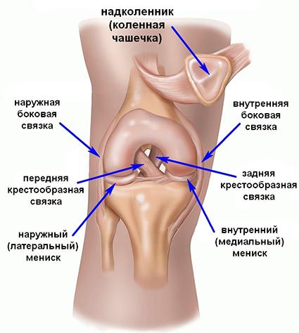 Uhine valu nakkus Meditsiini artroosi ennetamine