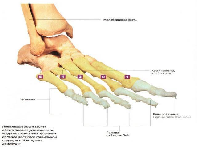Lekkeliidete valu Esimesed margid artriidi ja artroosi liigeste liigeste