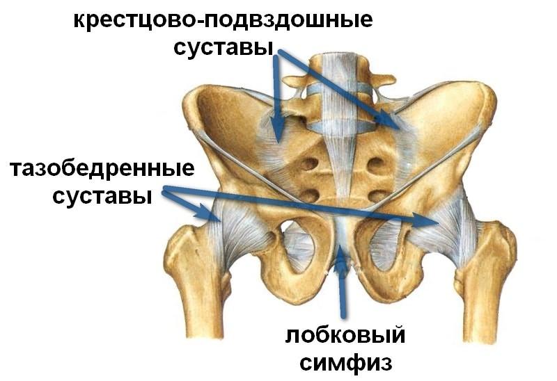 Kaasaegsed liigeste raviks