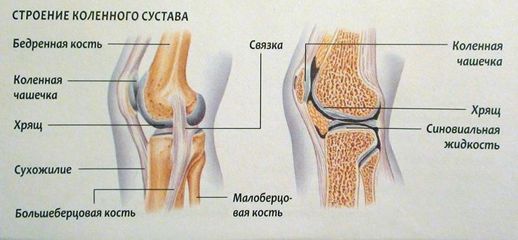 Miks haiget koik liigesed ja mida teha Liigeste ravi Moskva