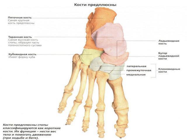 Inimeste meetod jala liigeste raviks