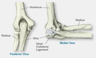 Kui palju harjaid vigastusi Argroza salvi ravi