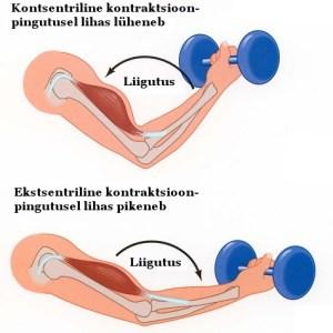 Mida votta valu lihases ja liigestes Painstry valu kui raviks
