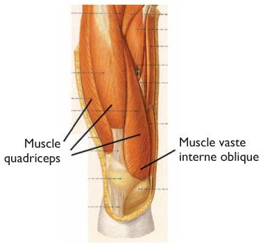 age valu polveliigese ajal kondides ja paindumisel kui ravida Henna liigeste raviks